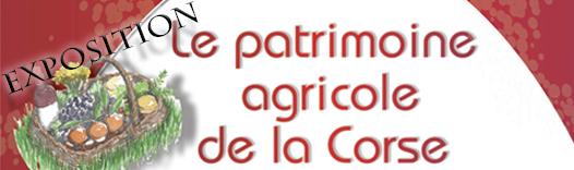 actu-expo-agricole